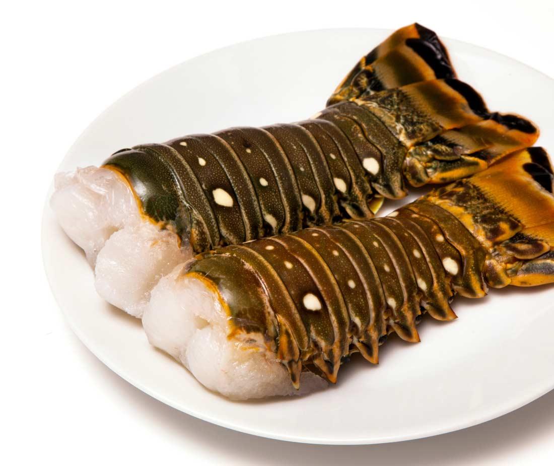 Mazzetta Company, LLC | Lobster Meat, North Atlantic
